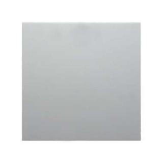 Berker 16231909 Serien-Wippe S1//B3//B7Glas polarweiß matt